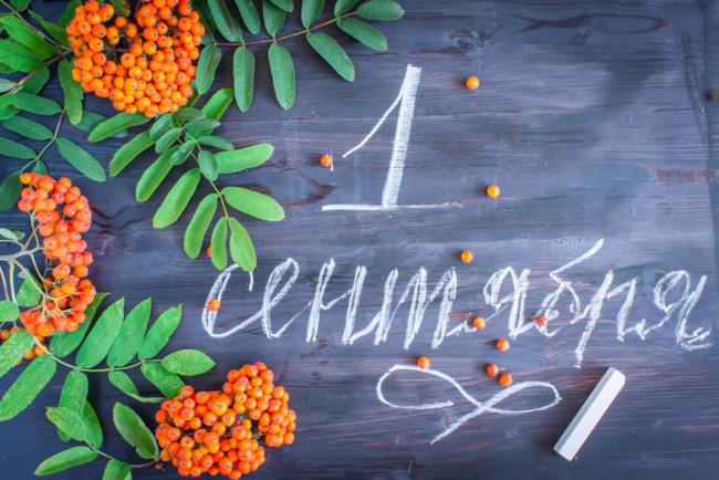 1 сентября новый учебный год начнется не только в общеобразовательных школах, но и в школах искусств